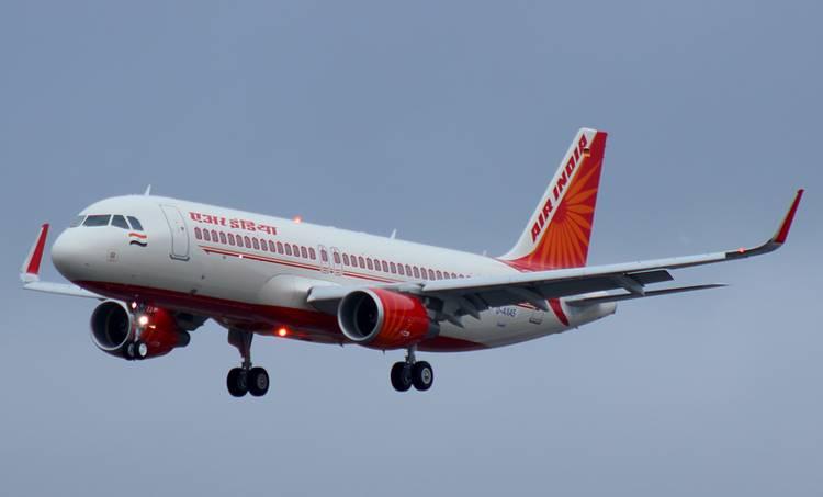 air india, ai flight hit by bird, plane bird collision, pune to delhi air india flight, ai 853 pune to delhi flight, delhi domestic airport, indian express