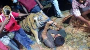 pulimurugan, mohanlal, tiger