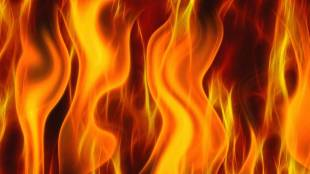 fire, Fire Accident, Payyoli, Kozhikode, Payyoli fire accident, iringol fire accident, Fire force