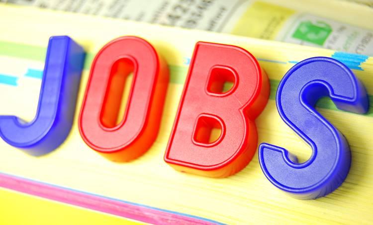 jobs, vaccancy