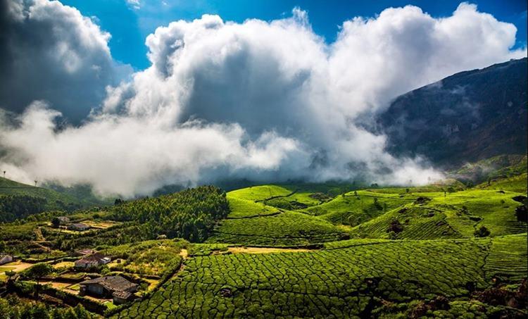 Munnar, മൂന്നാർ, മൂന്നാർ കൈയ്യേറ്റം, munnar land revenue cimmision, മൂന്നാർ വികസന സമിതി, Munnar illegal construction, മൂന്നാറിലെ നിയമവിരുദ്ധ കൈയ്യേറ്റങ്ങൾ