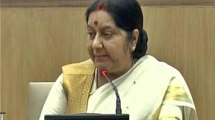 Sushma Swaraj, Paris climate deal