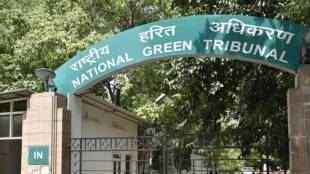 national green tribunal, central government
