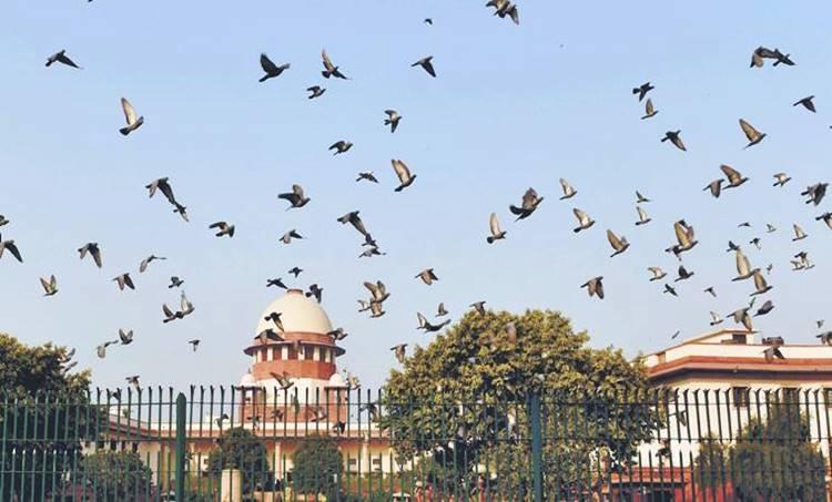 Indu Malhotra, K M Joseph, Supreme Court, Supreme Court judges appointment, india news
