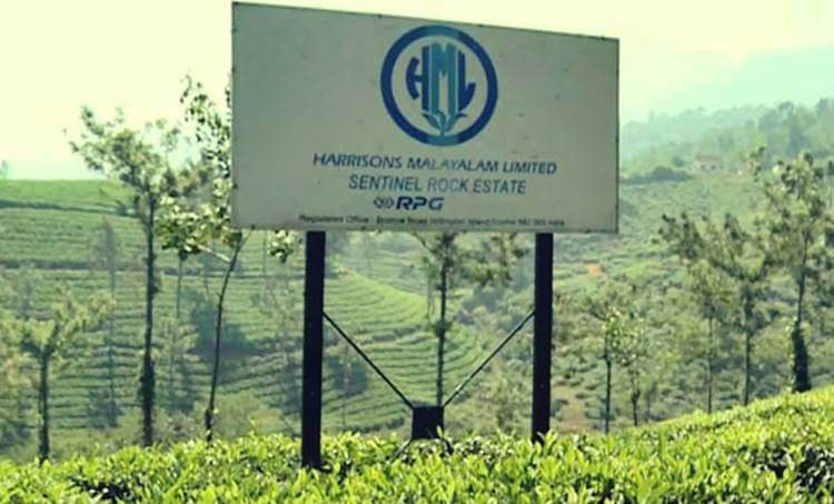 harrrison land case, supreme court