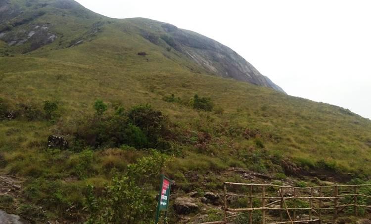 neelakurinji hills in kerala