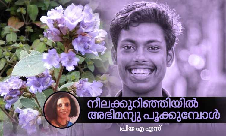 priya a. s, memories,neelakurinji,munnar,abhimanyu,maharajas
