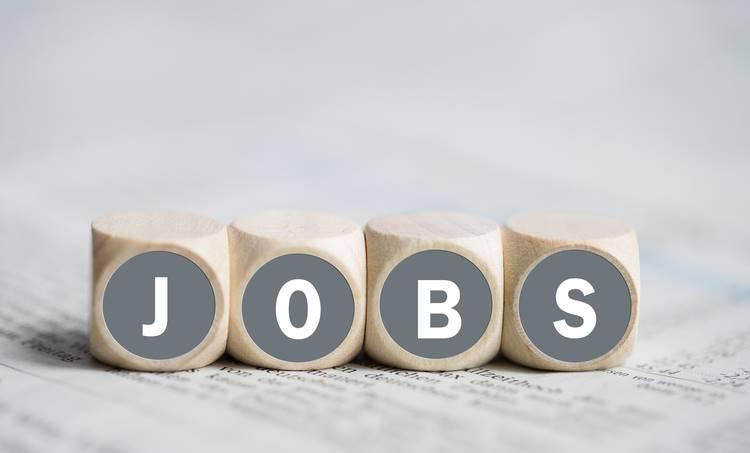 job, job news, തൊഴിൽ വാർത്തകൾ, ie malayalam, ഐഇ മലയാളം