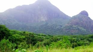 Agasthyarkoodam, Agasthyarkoodam trekking, Agasthyarkoodam booking, Agasthyarkoodam trekking 2019, അഗസ്ത്യാർകൂടം, അഗസ്ത്യാർകൂടം ട്രെക്കിങ്, അഗസ്ത്യാർകൂടം ബുക്കിങ്, അഗസ്ത്യാർകൂടം ട്രക്കിങ് 2019, Kerala Tourism, Kerala Tourism 2019, Kerala Tourism Agasthyarkoodam, അഗസ്ത്യാർകൂടം സ്ത്രീപ്രവേശനം