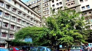 Moulana Hospital