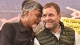 Rahul Gandhi and Chandra Babu Naidu amp