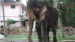 Thechikkottukavu Ramachandran