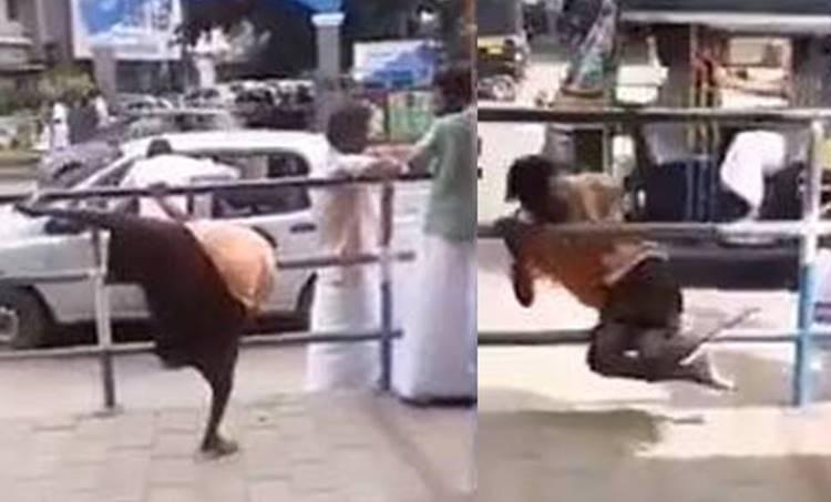 Drunk man video, Viral video, വൈറൽ വീഡിയോ, drunk man, പാമ്പ്, ie malayalam. ഐഇ മലയാളം