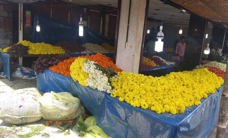 Onam, Covid Onam, Onam Restrictions, Kerala Government, Pinarayi Vijayan, Onam Shoping,ഓണം, നിയന്ത്രണങ്ങൾ, Kerala Covid News Live, കേരള കോവിഡ് വാർത്തകൾ തത്സമയം, Kerala Covid 19 News Kerala, കേരളത്തിലെ കോവിഡ് വാർത്തകൾ, Covid News Kerala, കേരളത്തിലെ കോവിഡ് വാർത്തകൾ, Covid 19, Kerala Numbers, കോവിഡ് 19, Thiruvannathapuram, തിരുവനന്തപുരം, Thrissur, തൃശൂർ, Total patients in Kerala, Kerala Covid, കേരള കോവിഡ്, Corona, കൊറോണ, IE Malayalam, ഐഇ മലയാളം,