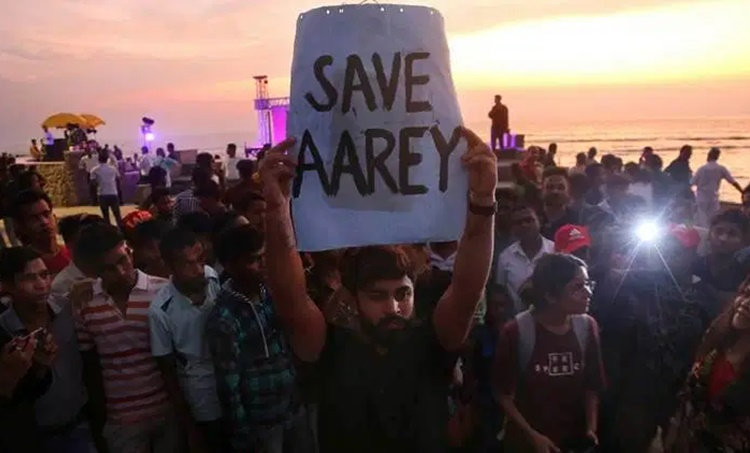 Aarey protests, ആരേ, Aarey colony, മരം, Aarey colony protests, സുപ്രീംകോടതി, Aarey tree cutting, supreme court, mmrcl cuts trees at Aarey, Mumbai metro, MMRCL, Bombay high court on aarey