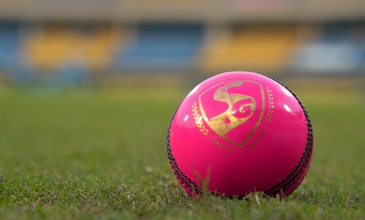 Difference between Red and Pink balls, pink balls, red balls, പിങ്ക് പന്ത്, India vs bangladesh, ഇന്ത്യ-ബംഗ്ലാദേശ്, ie malayalam, pink ball test, ഐഇ മലയാളം