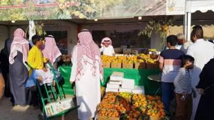 Al Hareeq orange festival, ഹരീഖ് ഓറഞ്ച് ഫെസ്റ്റിവൽ, saudi arabia, ie malayalam, ഐഇ മലയാളം