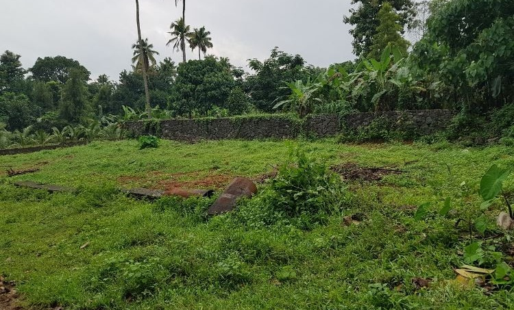Land Rate Kerala Budget 2020