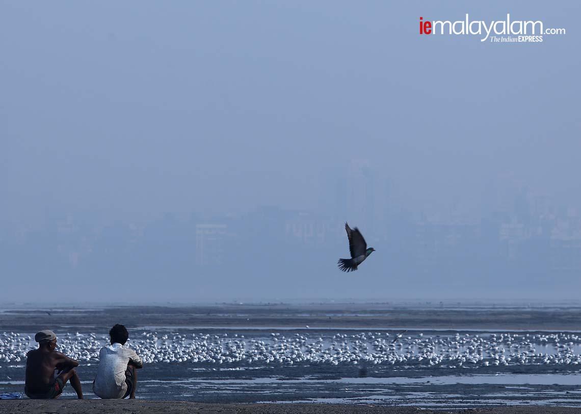 mumbai, Nirmal Harindran, ie malayalam