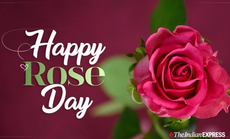 rose day, ie malayalam