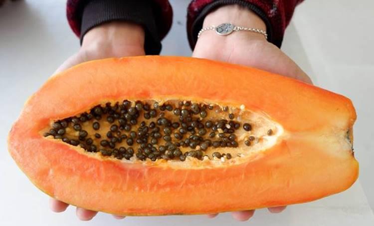 papaya, ie malayalam
