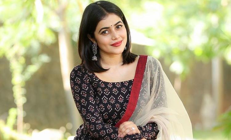 Shamna Kasim, Shamna Kasim blackmail case