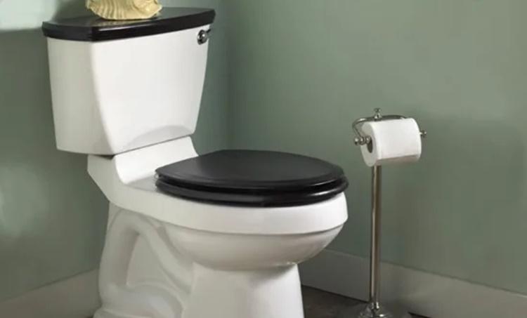 കൊറോണ വൈറസ്,ടോയ്ലറ്റ് ഉപയോഗിക്കുമ്പോൾ,Coronavirus outbreak,using toilet