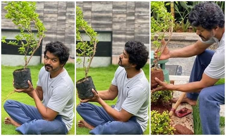Vijay, Vijay latest photos, Vijay home, Green India Challenge , Vijay took Green India Challenge, വിജയ്
