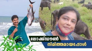 Manju Pillai, Vinod Kovoor, Manju Pillai farm life, Vinod Kovoor fish business, മഞ്ജുപിള്ള, വിനോദ് കോവൂർ