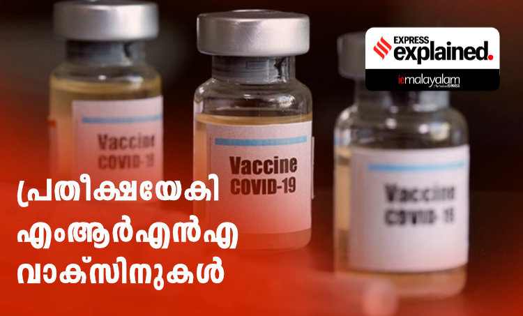 RNA vaccine, mRNA vaccine, What is Moderna vaccine, What is Pfizer vaccine, What is RNA vaccine, RNA vaccine explained, ie malayalam