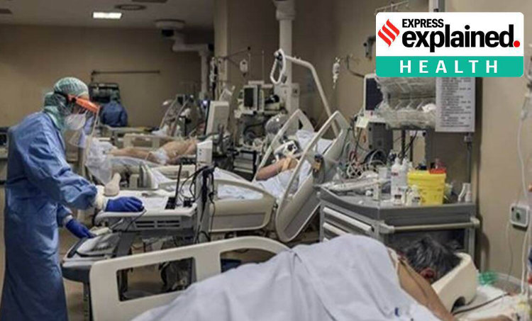 Guillain Barre Syndrome, Guillain Barre Syndrome Covid, what is Guillain Barre Syndrome, covid effects on brain, covid effects on nervous system, health complications due to covid, express explained, indian express