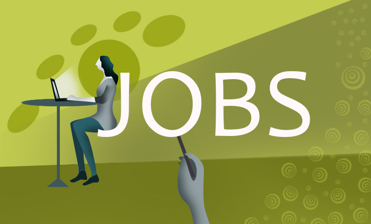 Jobs, Job vacancy, Job vacancies, jobs news, Jobs in kochi, jobs in kerala, jobs in trivandrum, job vacancy in ernakulam, jobs in kochi for freshers, jobs for freshers,, urgent job vacancies in ernakulam, jobs in india, indeed job, jobs near me, jobs hiring near me, തൊഴിലവസരങ്ങൾ, university announcements, university jobs, calicut university jobs, kerala university jobs
