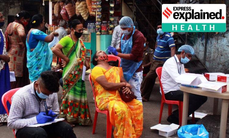 Coronavirus, Covid immunity, Coronavirus immunity,കൊറോണ, കോവിഡ്, Indian Express, ie malayalam
