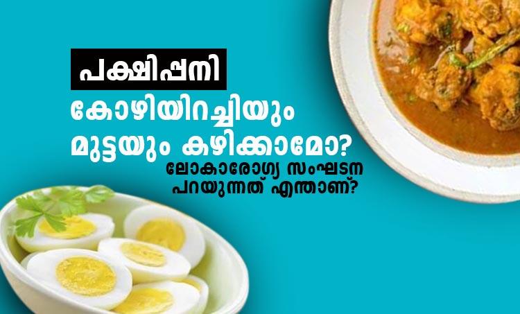 bird flu, chicken, eggs,iemalayalam