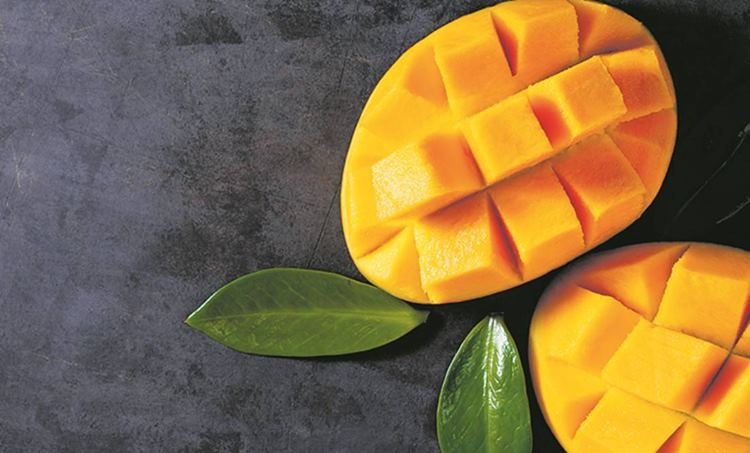 mango, ie malayalam