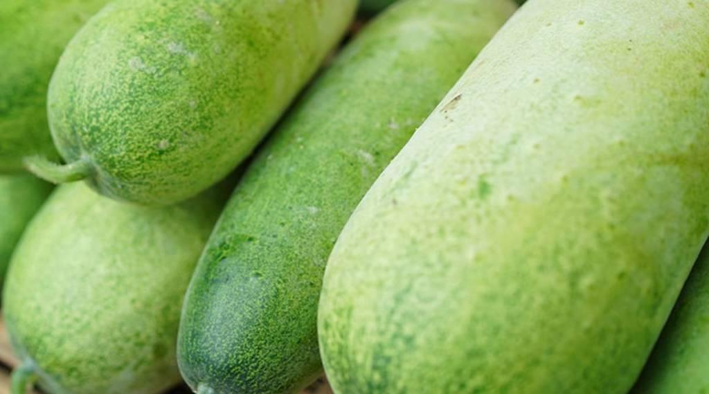 ash gourd, health, ie malayalam
