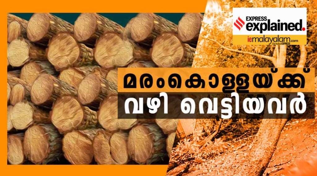 illegal tree felling case, IE Malayalam