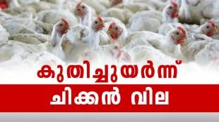chicken price, chicken price hike, chicken price hike kerala, bakrid, festive season kerala chicken price, poultry feed price hike, covid 19 chicken price hike, lockdown chicken price hike, ie malayalam