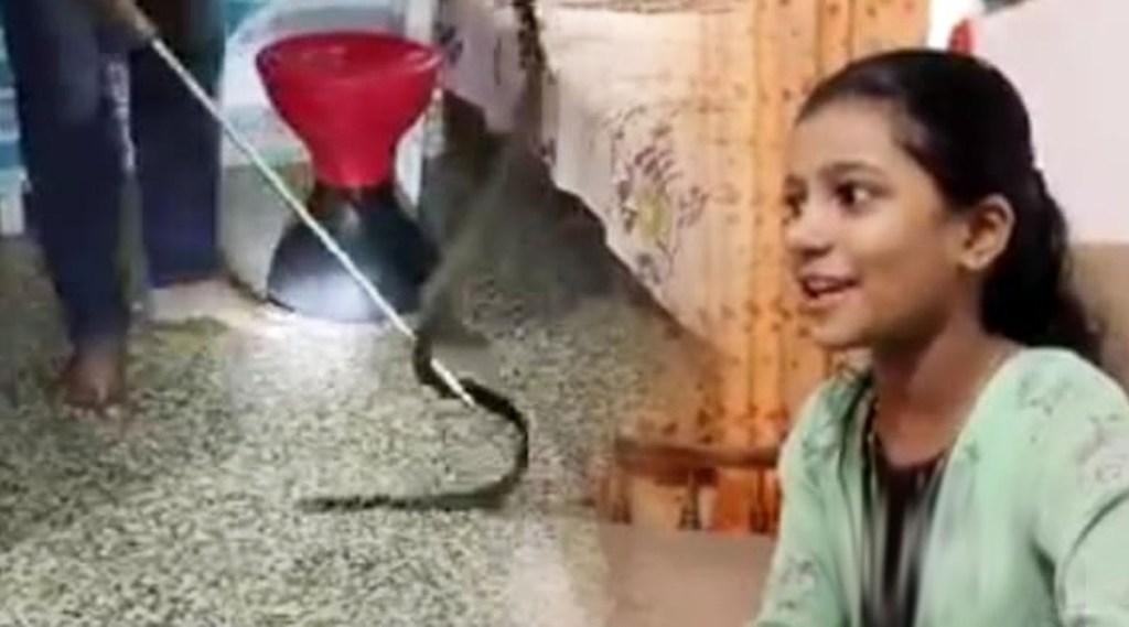 viral video, viral video in social media, snake rescue, snake rescue viral story, snake rescue viral story erattupetta, snake rescue viral story erattupetta mariyam, indian express malayalam, ie malayalam