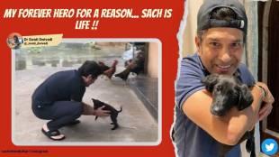 sachin tendulkar, sachin tendulkar new pet, sachin tendulkar adopts stray dog, tendulkar new indie puppy spike, viral videos, sports news, indian express malayalam