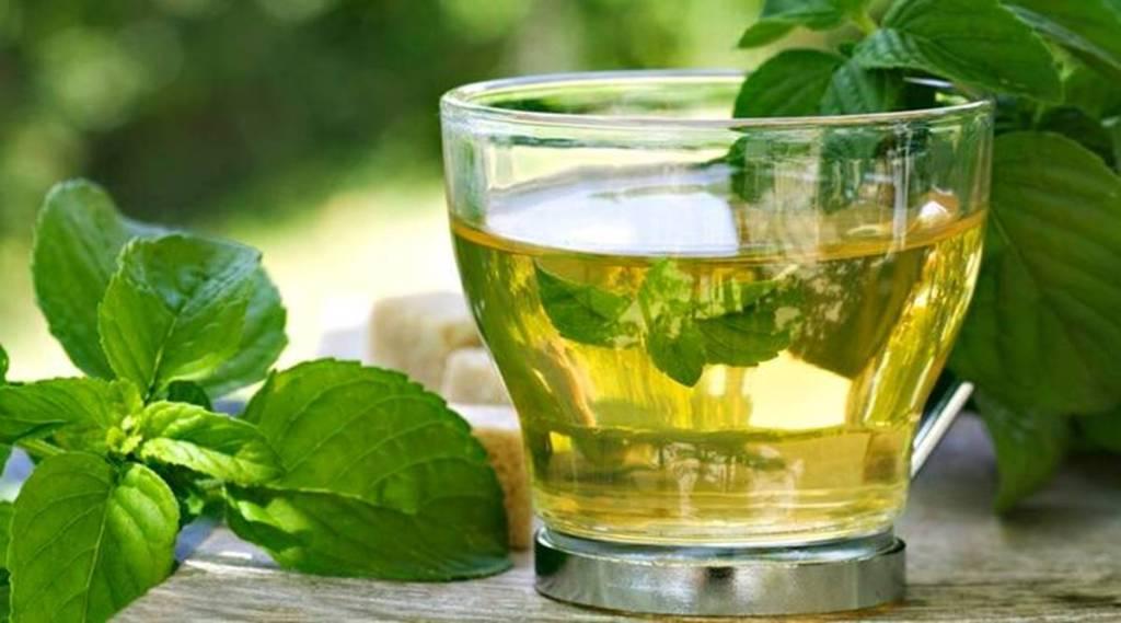 green tea, health, ie malayalam
