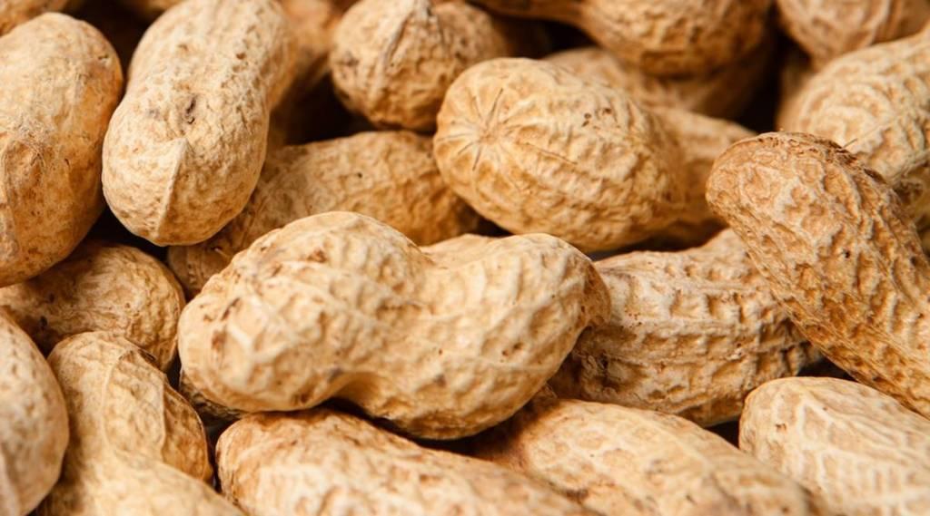 peanuts, health, ie malayalam